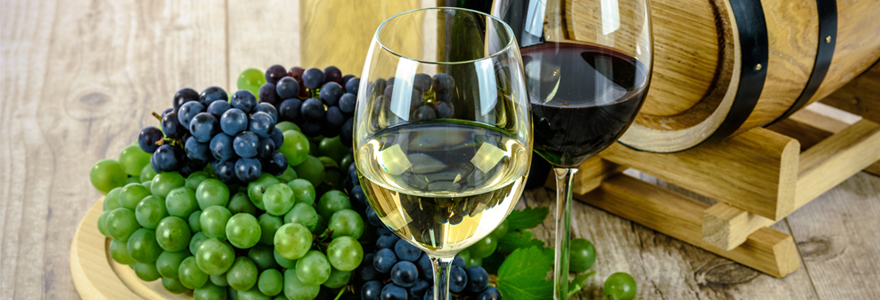 Formations liées au métier du vin